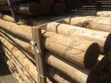 Kastanje paal diameter 8-10  cm _